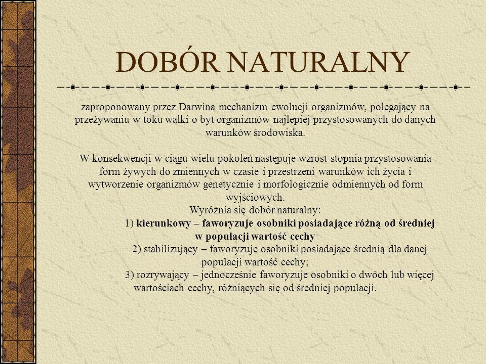 DOBÓR NATURALNY