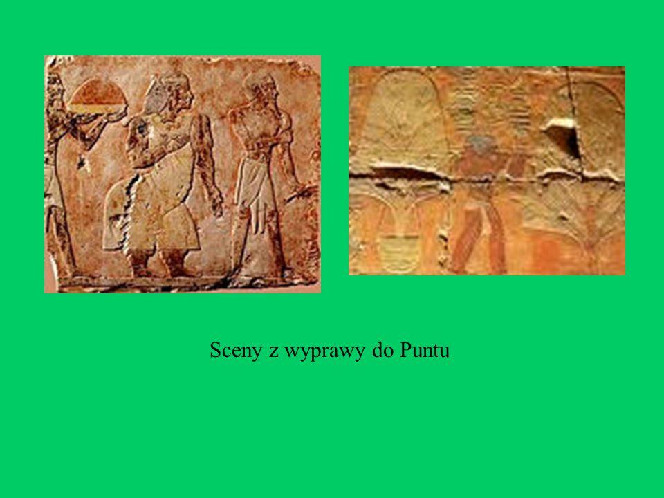 Sceny z wyprawy do Puntu