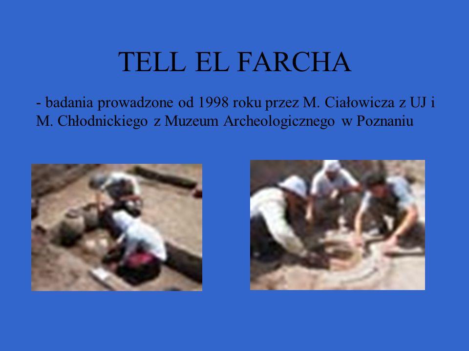 TELL EL FARCHA badania prowadzone od 1998 roku przez M.