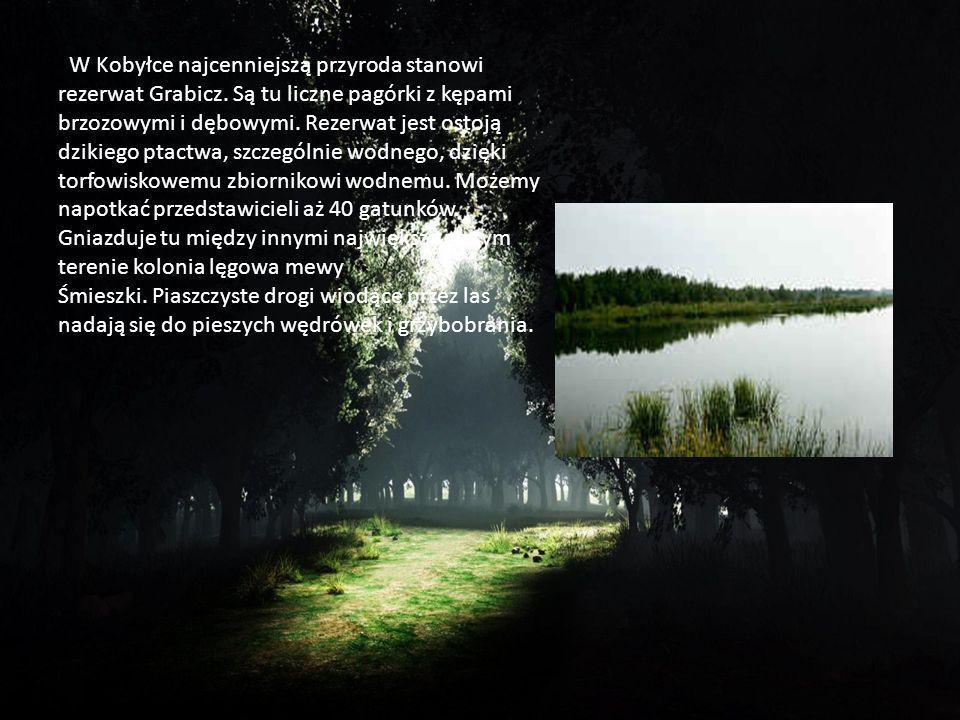 W Kobyłce najcenniejszą przyroda stanowi rezerwat Grabicz