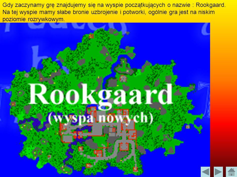 Gdy zaczynamy grę znajdujemy się na wyspie początkujących o nazwie : Rookgaard.