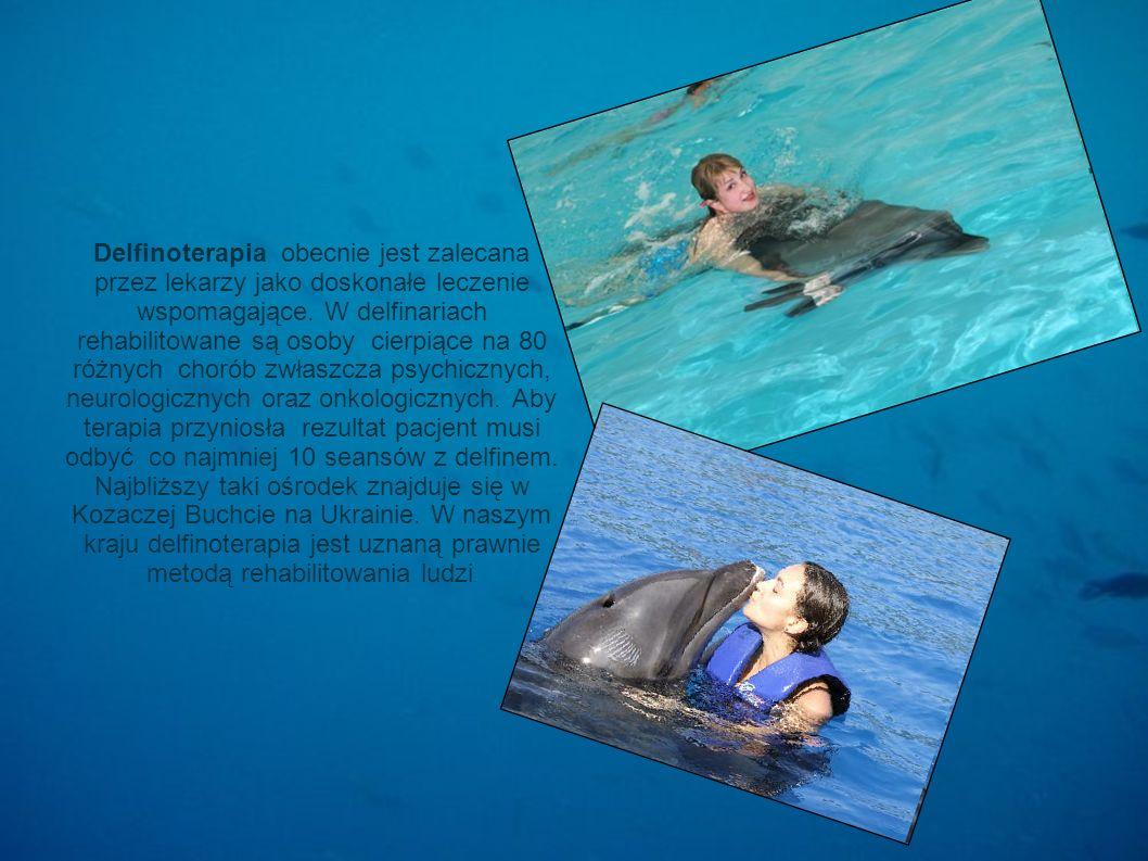 Delfinoterapia obecnie jest zalecana przez lekarzy jako doskonałe leczenie wspomagające.