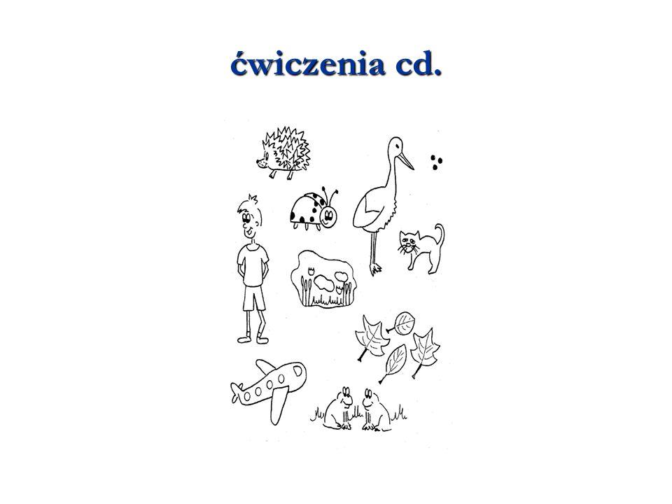 ćwiczenia cd. 14