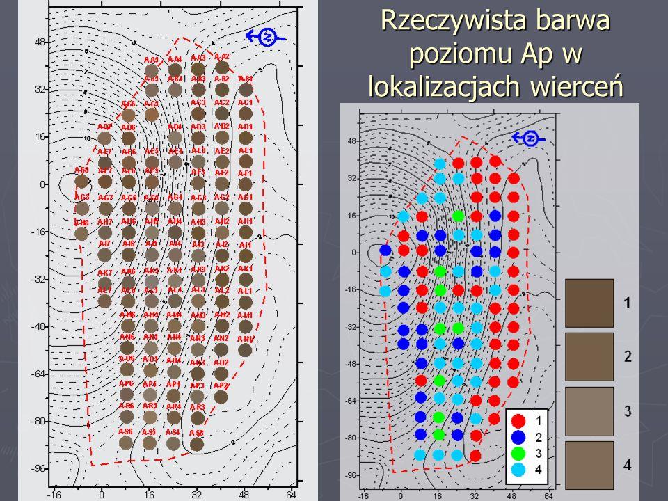Rzeczywista barwa poziomu Ap w lokalizacjach wierceń