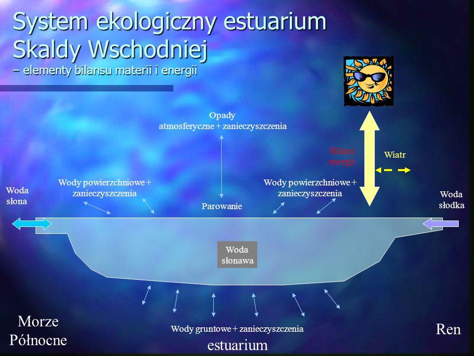 System ekologiczny estuarium Skaldy Wschodniej – elementy bilansu materii i energii
