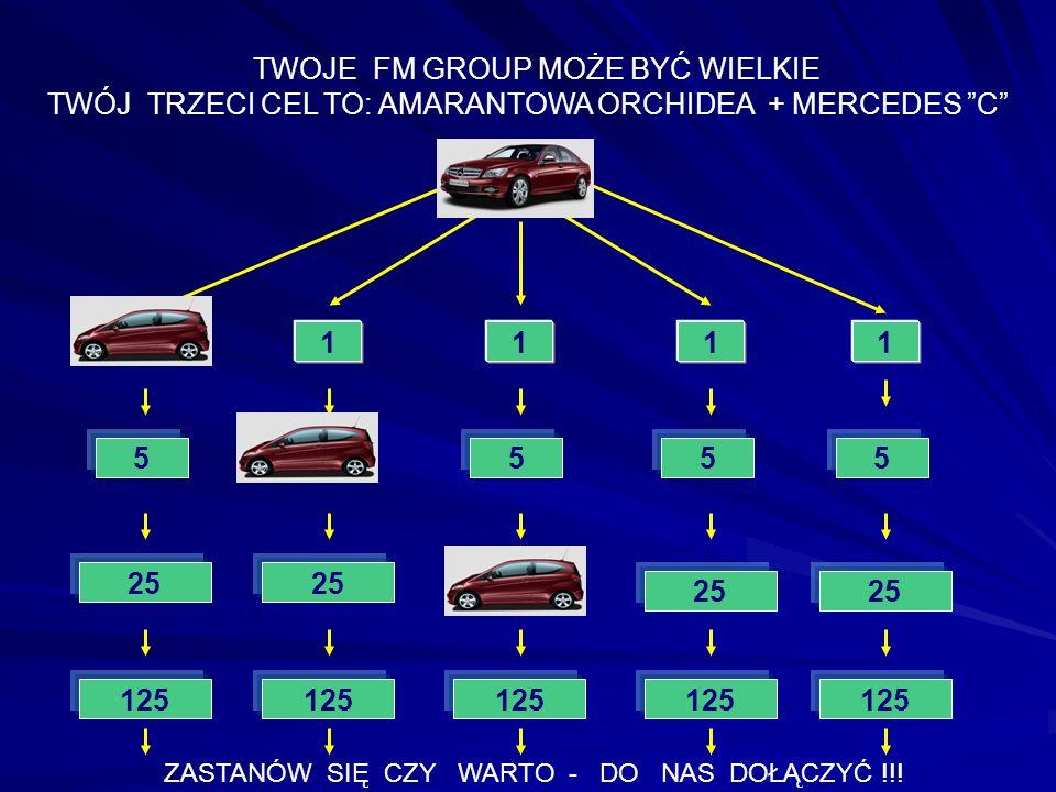 TWÓJ TRZECI CEL TO: AMARANTOWA ORCHIDEA + MERCEDES C