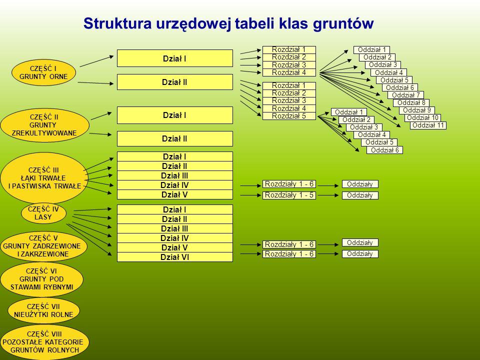 Struktura urzędowej tabeli klas gruntów