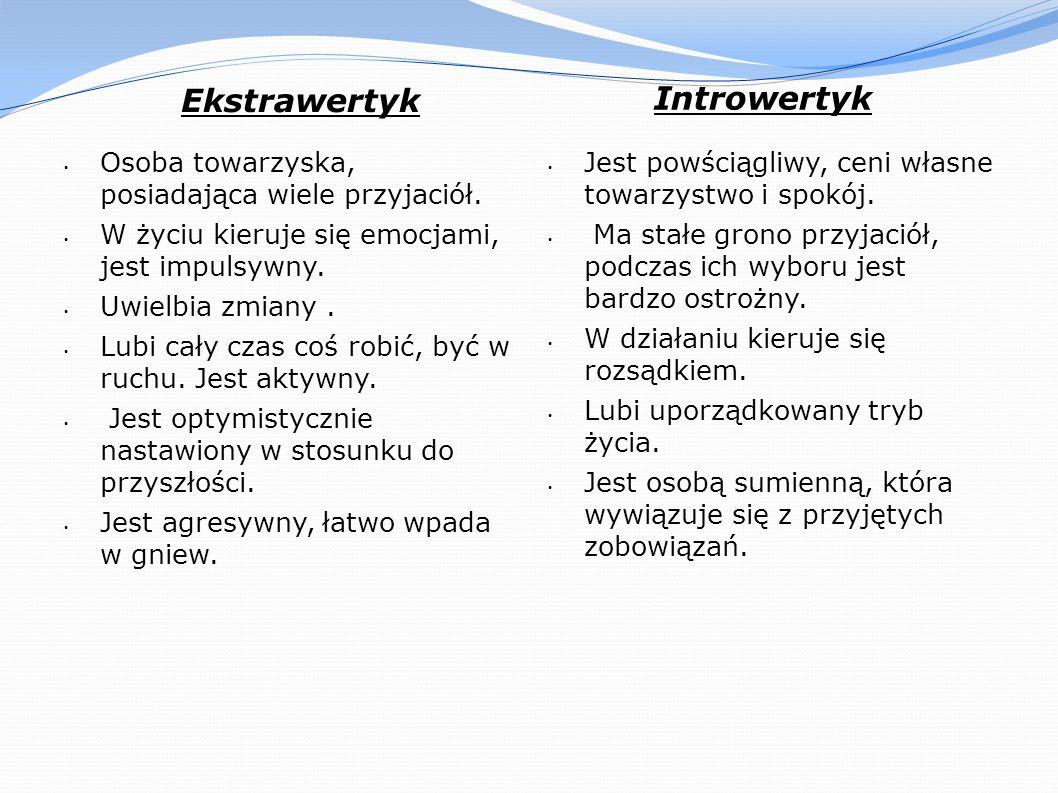 Introwertyk Ekstrawertyk