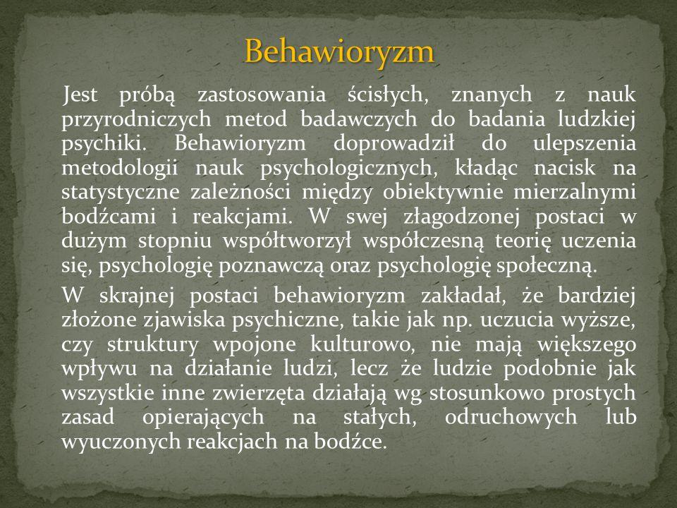 Behawioryzm