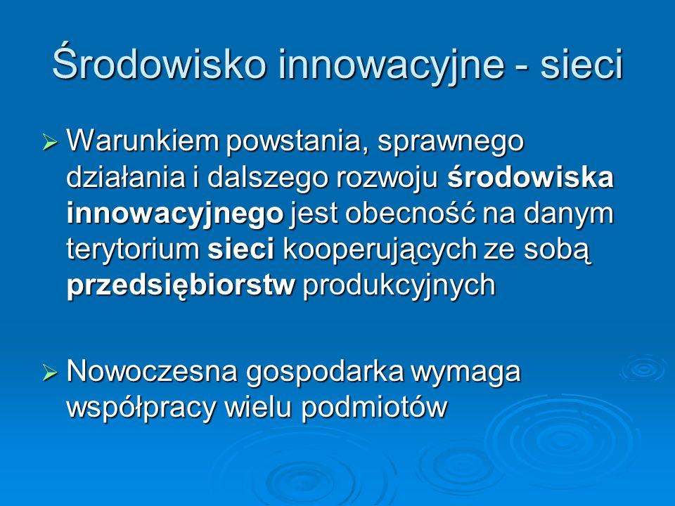 Środowisko innowacyjne - sieci