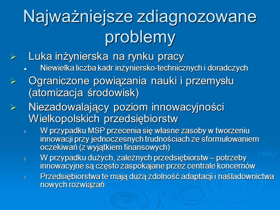 Najważniejsze zdiagnozowane problemy