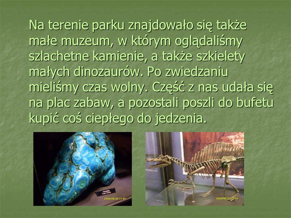 Na terenie parku znajdowało się także małe muzeum, w którym oglądaliśmy szlachetne kamienie, a także szkielety małych dinozaurów.