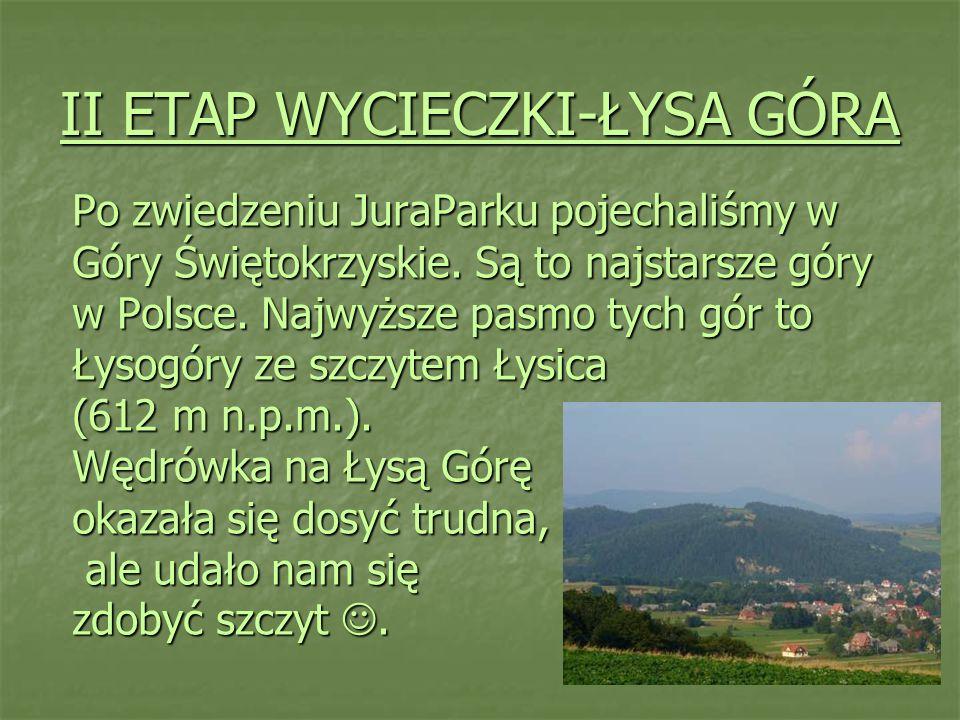 II ETAP WYCIECZKI-ŁYSA GÓRA