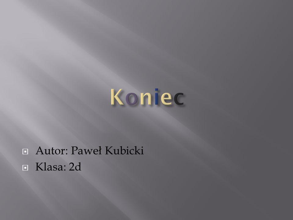 Koniec Autor: Paweł Kubicki Klasa: 2d