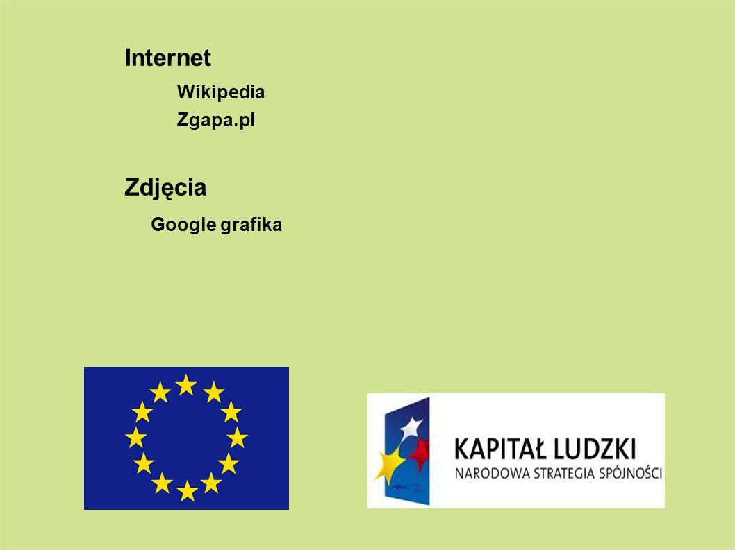 Internet Wikipedia Zgapa.pl Zdjęcia Google grafika