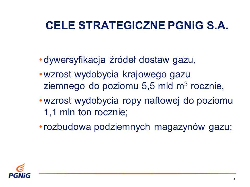 CELE STRATEGICZNE PGNiG S.A.