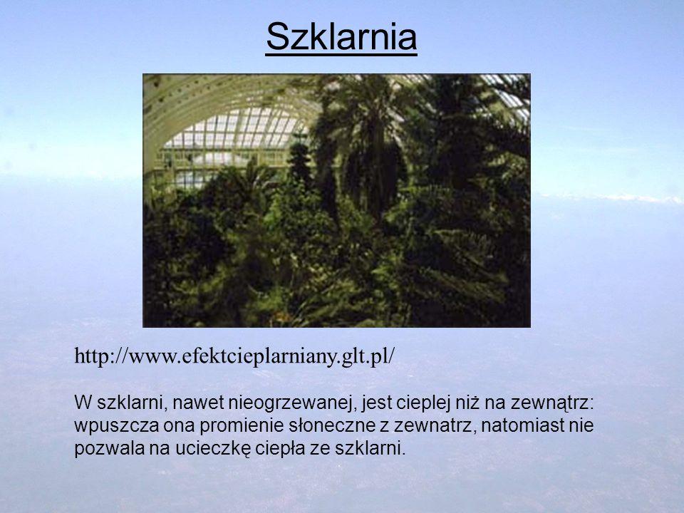 Szklarnia http://www.efektcieplarniany.glt.pl/