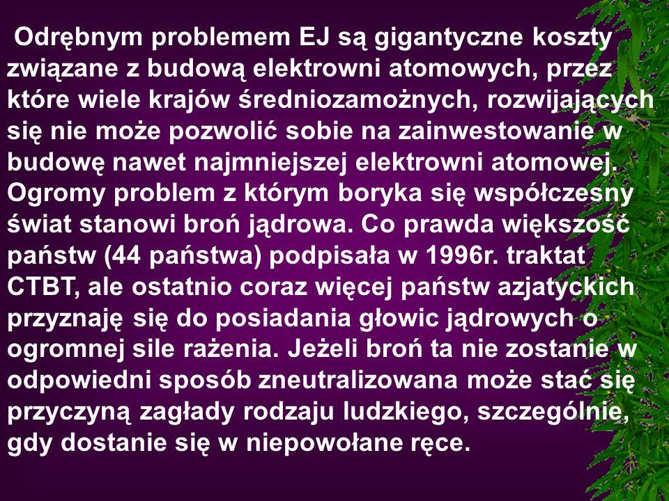 Odrębnym problemem EJ są gigantyczne koszty związane z budową elektrowni atomowych, przez które wiele krajów średniozamożnych, rozwijających się nie może pozwolić sobie na zainwestowanie w budowę nawet najmniejszej elektrowni atomowej.