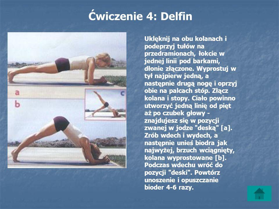 Ćwiczenie 4: Delfin