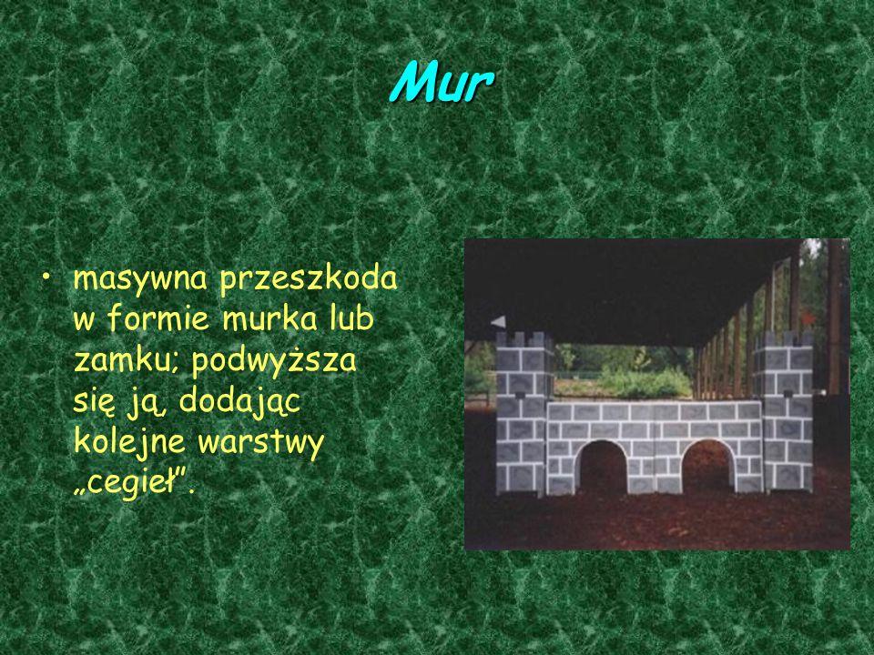 """Mur masywna przeszkoda w formie murka lub zamku; podwyższa się ją, dodając kolejne warstwy """"cegieł ."""