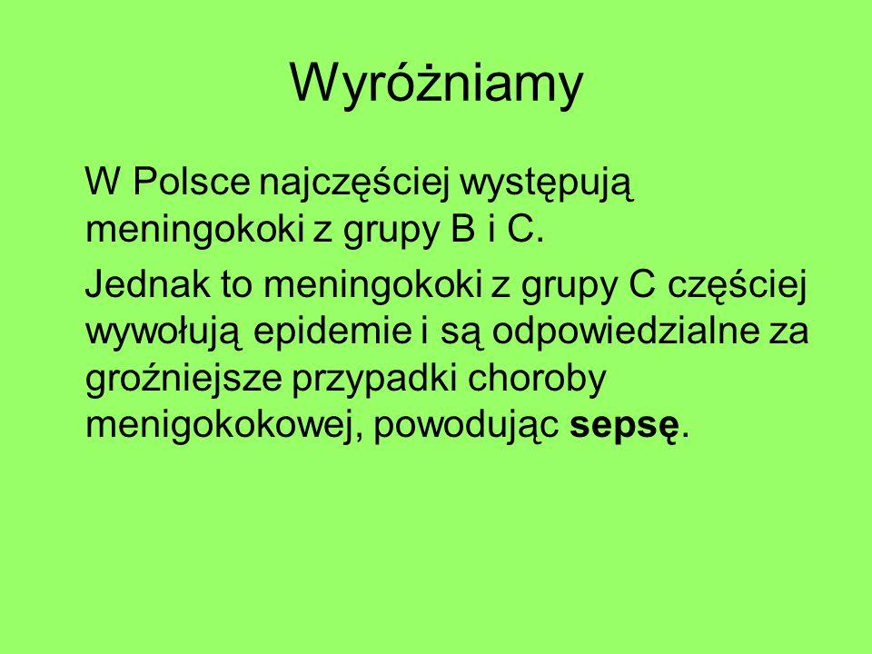 Wyróżniamy W Polsce najczęściej występują meningokoki z grupy B i C.