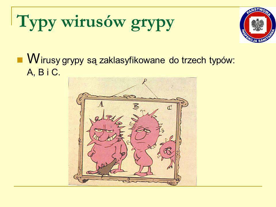 Typy wirusów grypy Wirusy grypy są zaklasyfikowane do trzech typów: A, B i C.