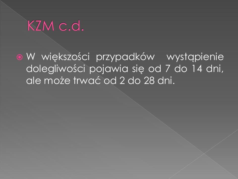 KZM c.d.