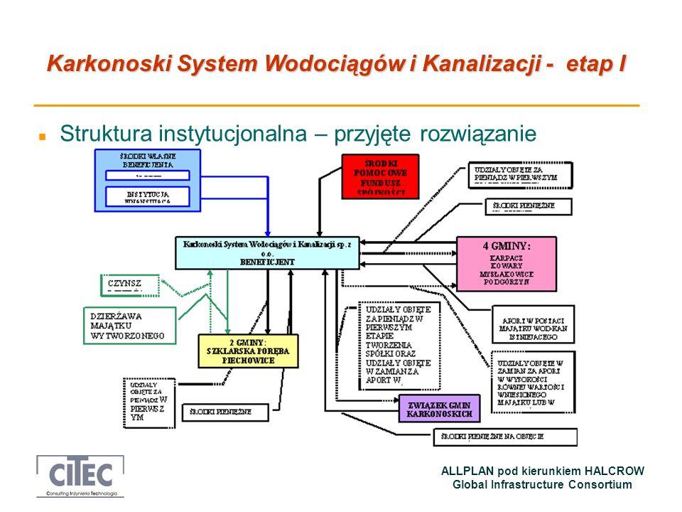 Struktura instytucjonalna – przyjęte rozwiązanie