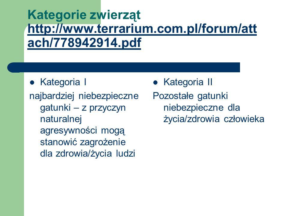 Kategorie zwierząt http://www. terrarium. com