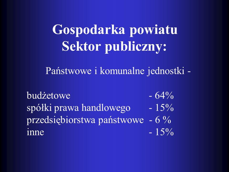 Państwowe i komunalne jednostki - budżetowe - 64%