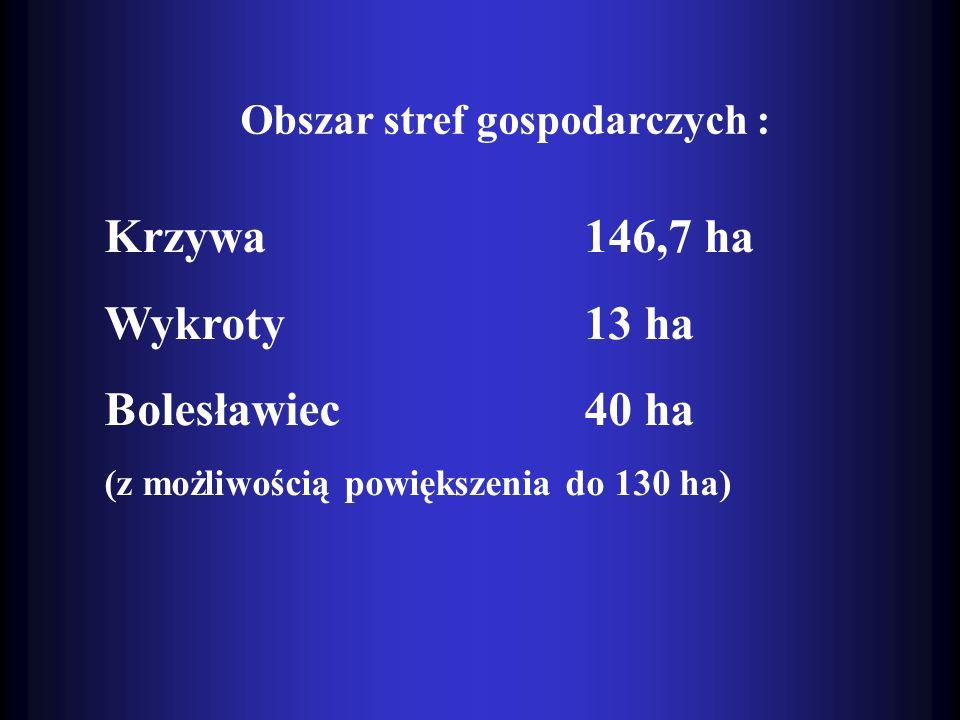 Krzywa 146,7 ha Wykroty 13 ha Bolesławiec 40 ha