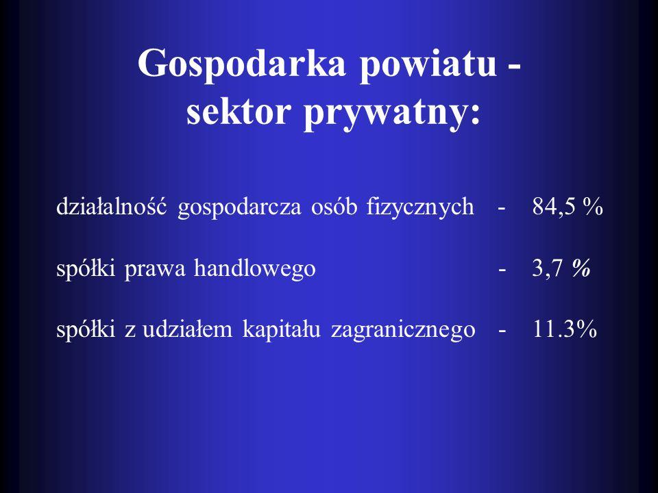 Gospodarka powiatu - sektor prywatny:
