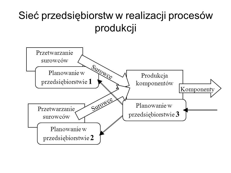 Sieć przedsiębiorstw w realizacji procesów produkcji