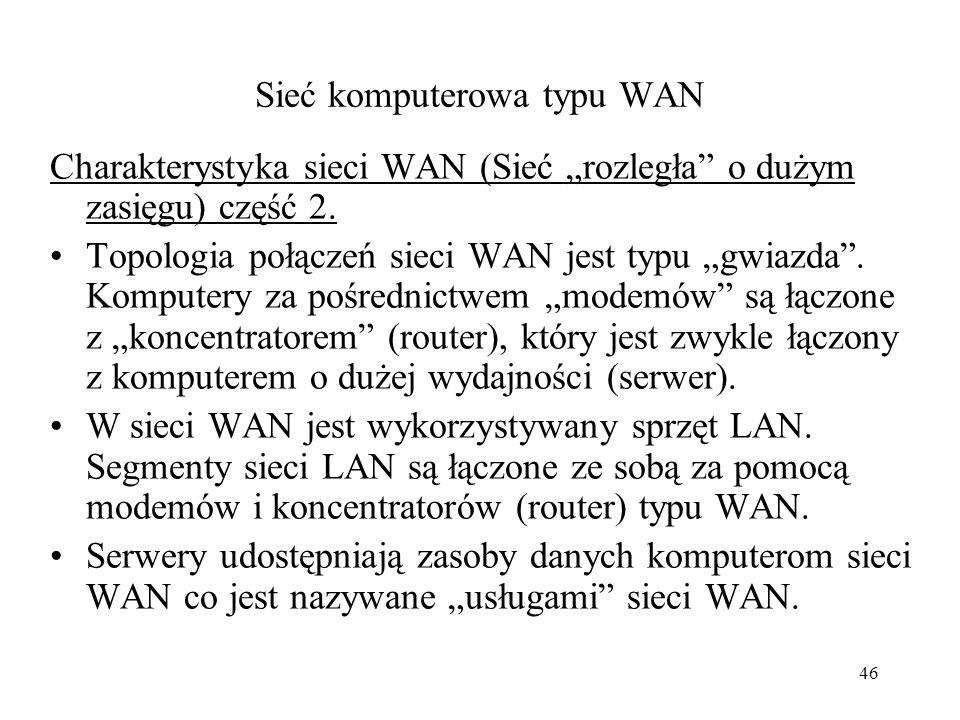 Sieć komputerowa typu WAN