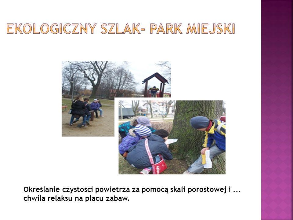 Ekologiczny szlak- park miejski