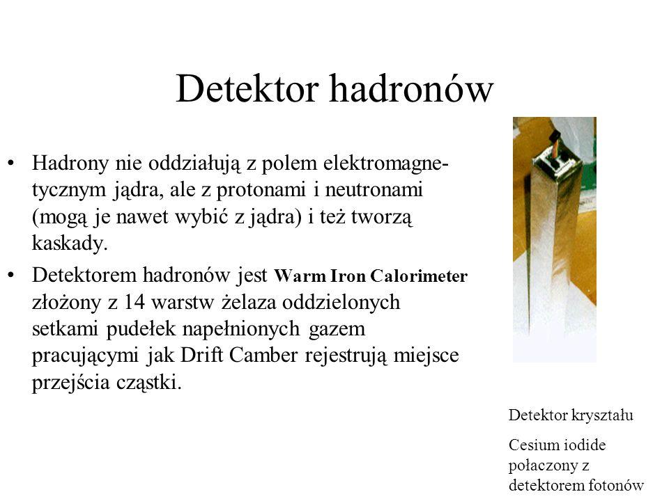 Detektor hadronów