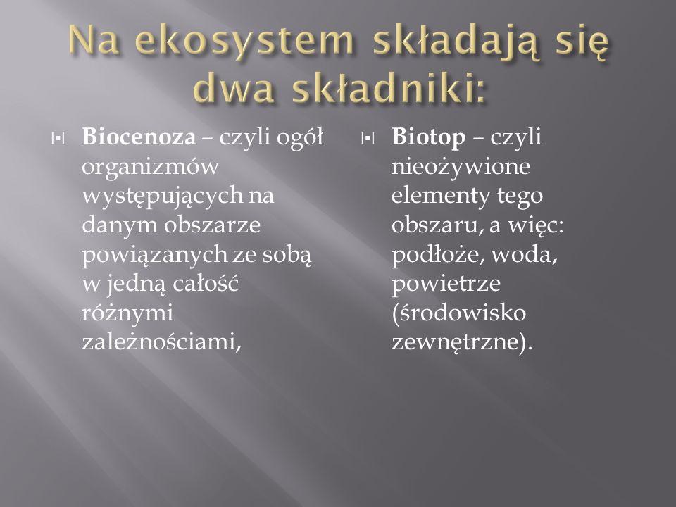 Na ekosystem składają się dwa składniki: