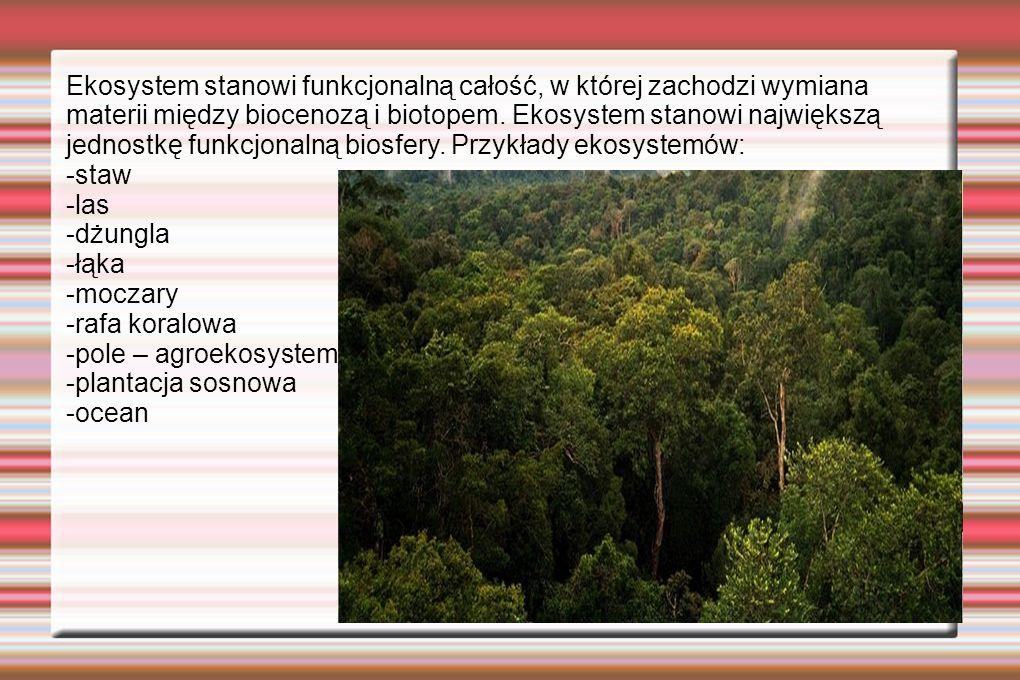 Ekosystem stanowi funkcjonalną całość, w której zachodzi wymiana materii między biocenozą i biotopem. Ekosystem stanowi największą jednostkę funkcjonalną biosfery. Przykłady ekosystemów: