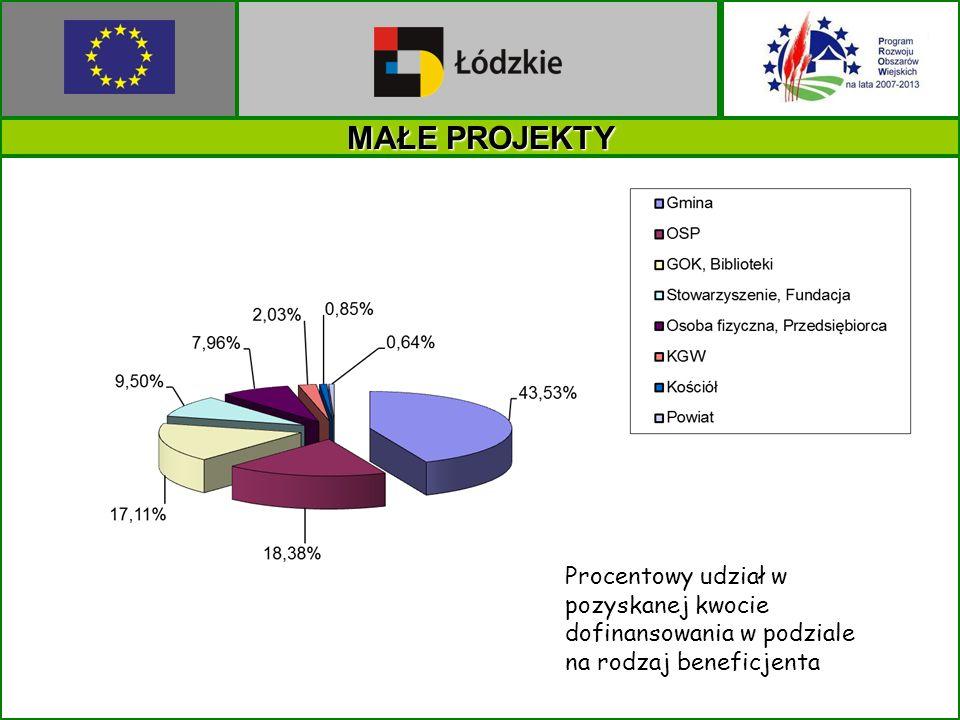 MAŁE PROJEKTY Procentowy udział w pozyskanej kwocie dofinansowania w podziale na rodzaj beneficjenta.