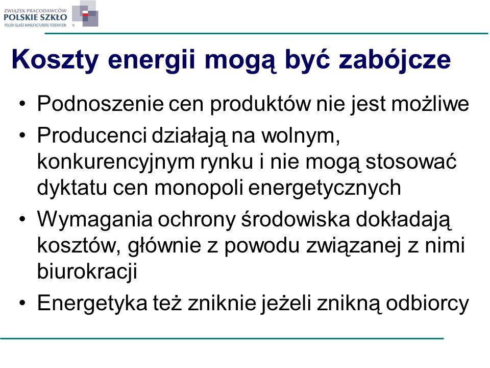 Koszty energii mogą być zabójcze