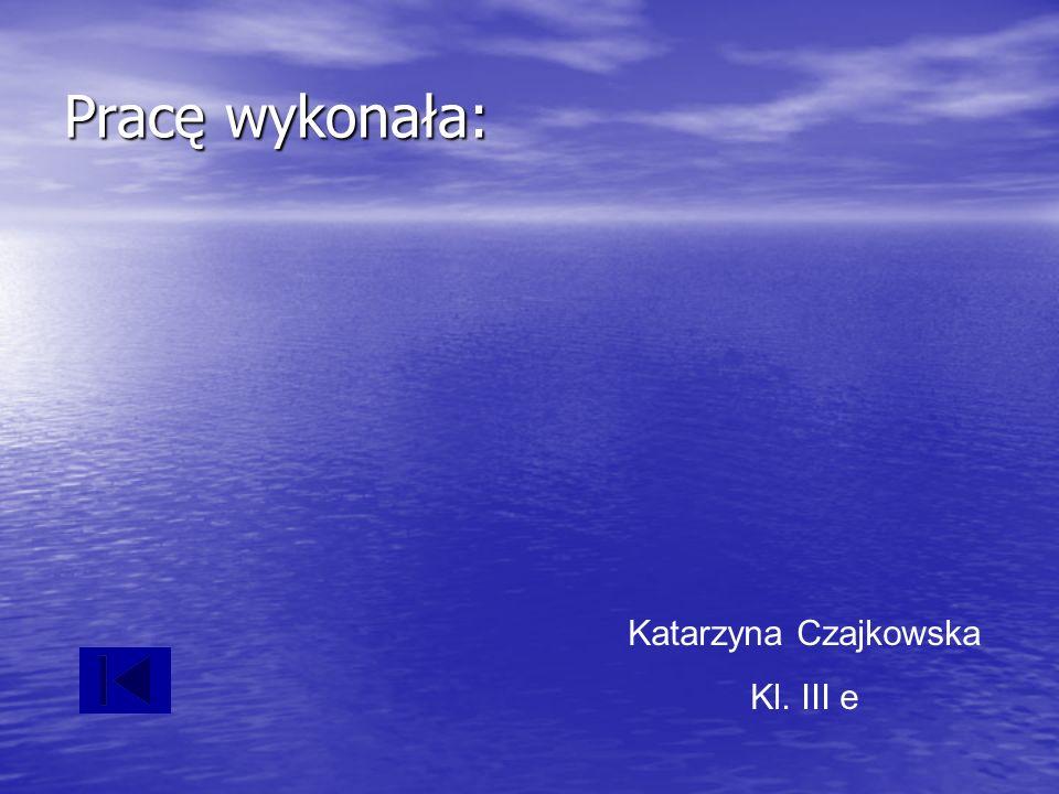 Pracę wykonała: Katarzyna Czajkowska Kl. III e