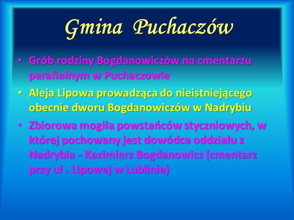 Gmina PuchaczówGrób rodziny Bogdanowiczów na cmentarzu parafialnym w Puchaczowie.