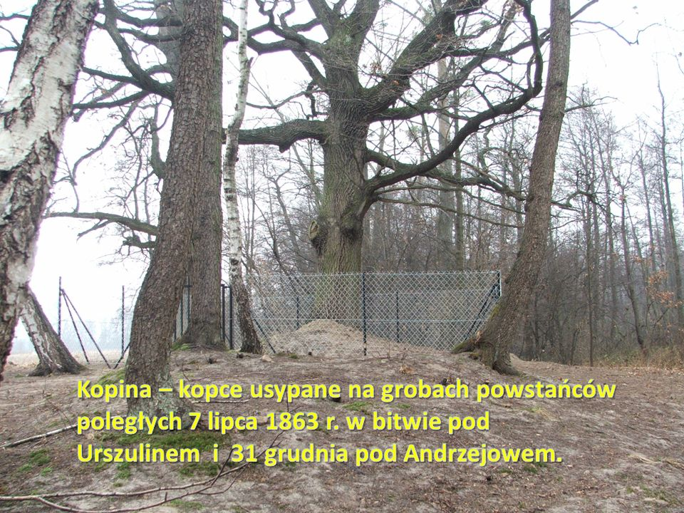 Kopina – kopce usypane na grobach powstańców poległych 7 lipca 1863 r