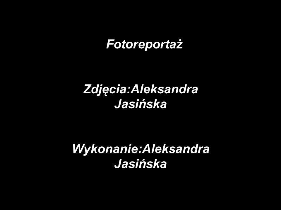 Zdjęcia:Aleksandra Jasińska Wykonanie:Aleksandra Jasińska