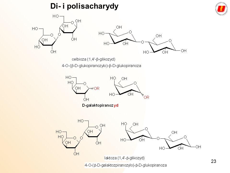 Di- i polisacharydy