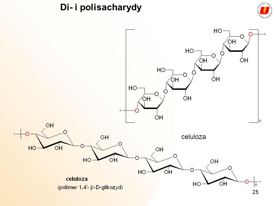 Di- i polisacharydy celuloza