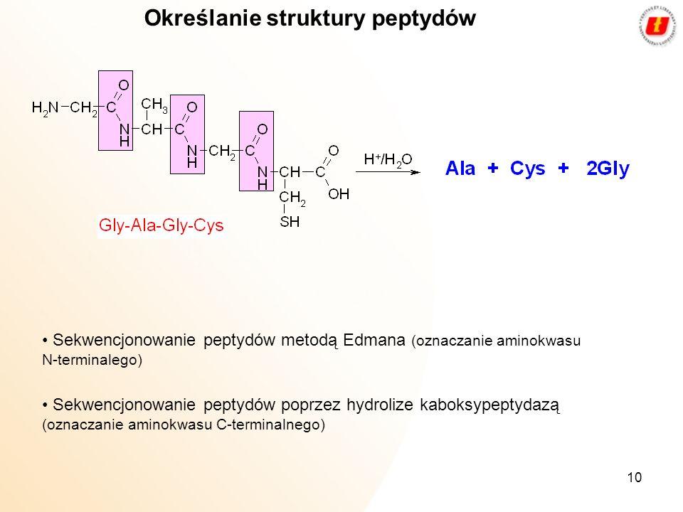 Określanie struktury peptydów