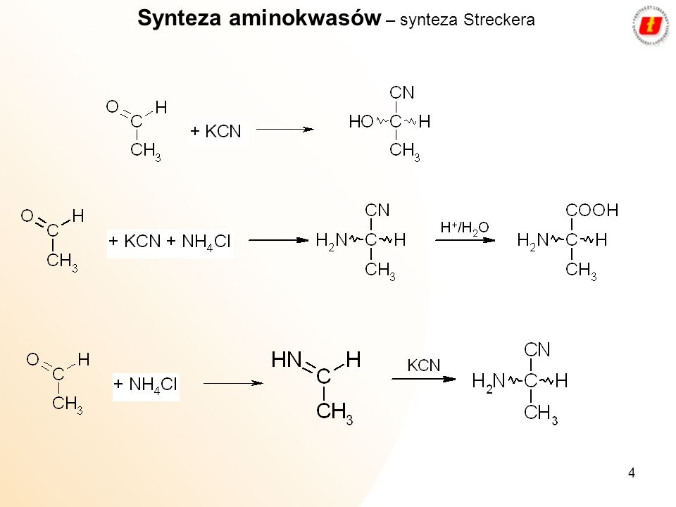 Synteza aminokwasów – synteza Streckera