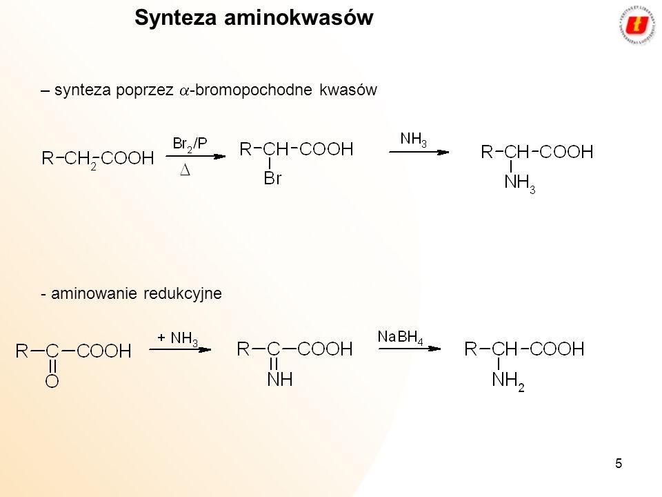 Synteza aminokwasów – synteza poprzez a-bromopochodne kwasów