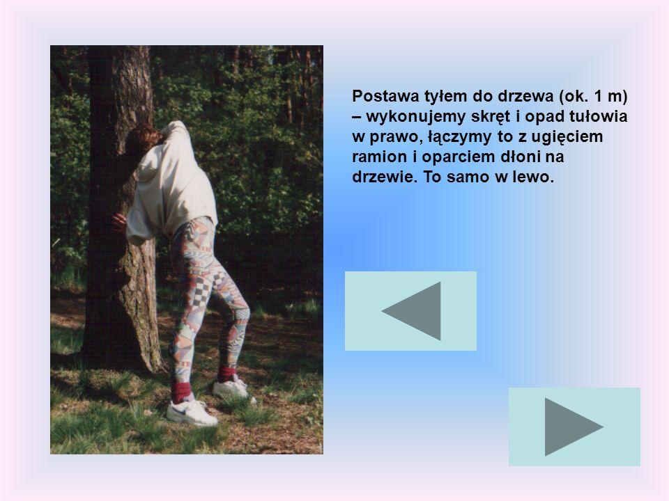 Postawa tyłem do drzewa (ok